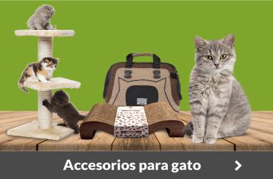 Venta de accesorios para gatos. Mejores ofertas de Internet